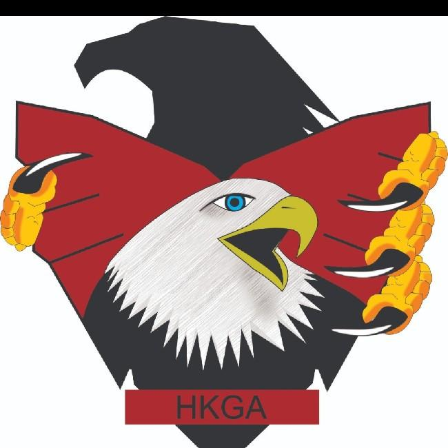 Hawk Gaming