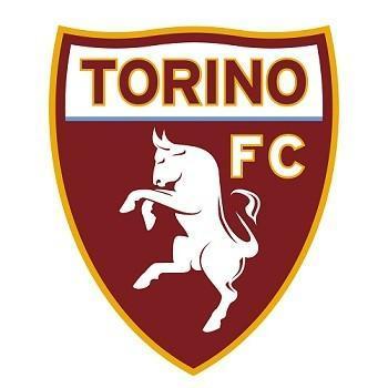 Torino - angel