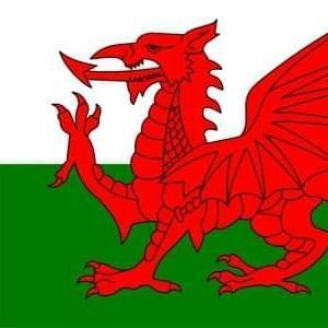 Gales *Carloncho*