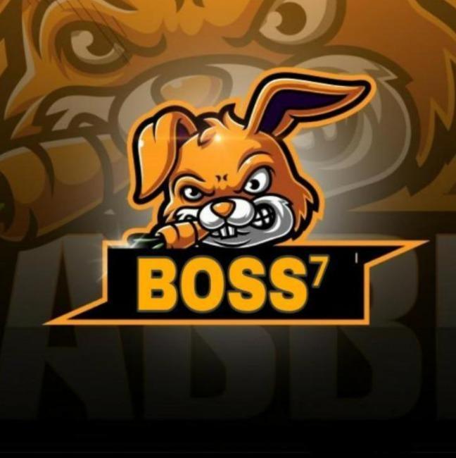 Boss 7