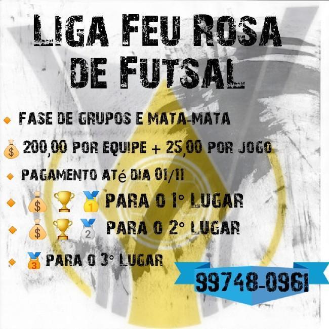 Liga Feu Rosa de Futsal