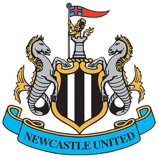 Newcastle - Zicardinho