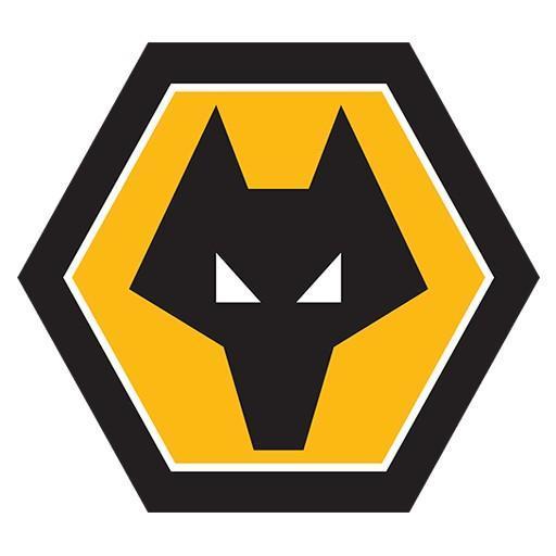 Wolverhampton - Andres Lopez