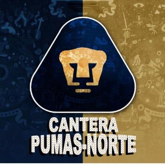 Pumas Norte