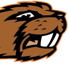 New Mexico Beavers