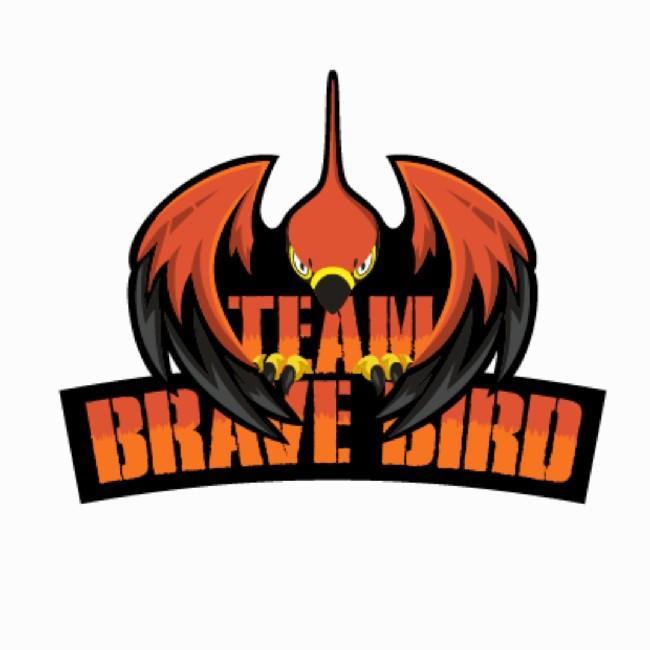 Team Brave Bird