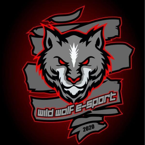 WILD WOLF ESPORT