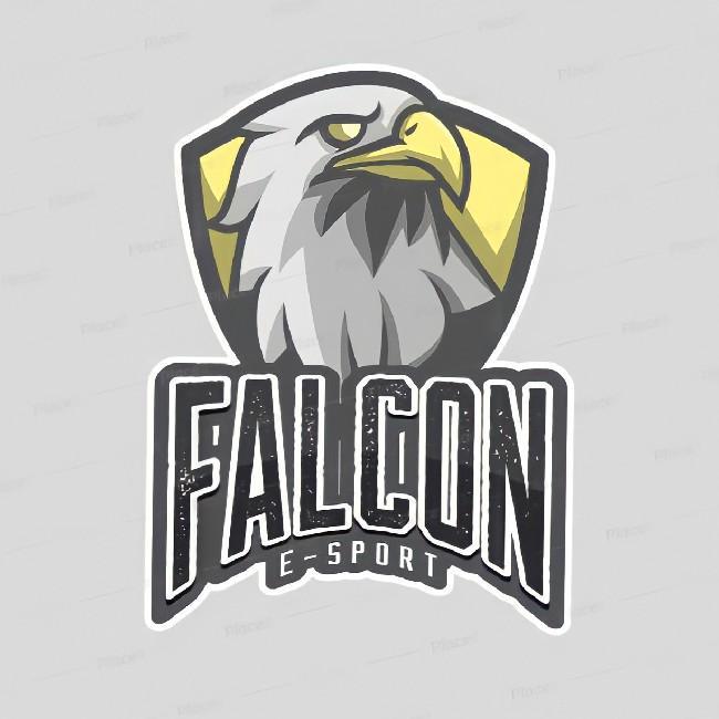 Falcon E-sport