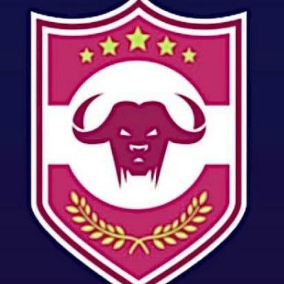 Pintinmonkis FC