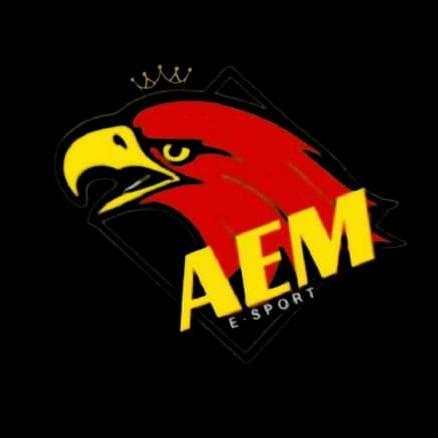 AEM E SPORT