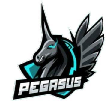 PEGASUS PVP