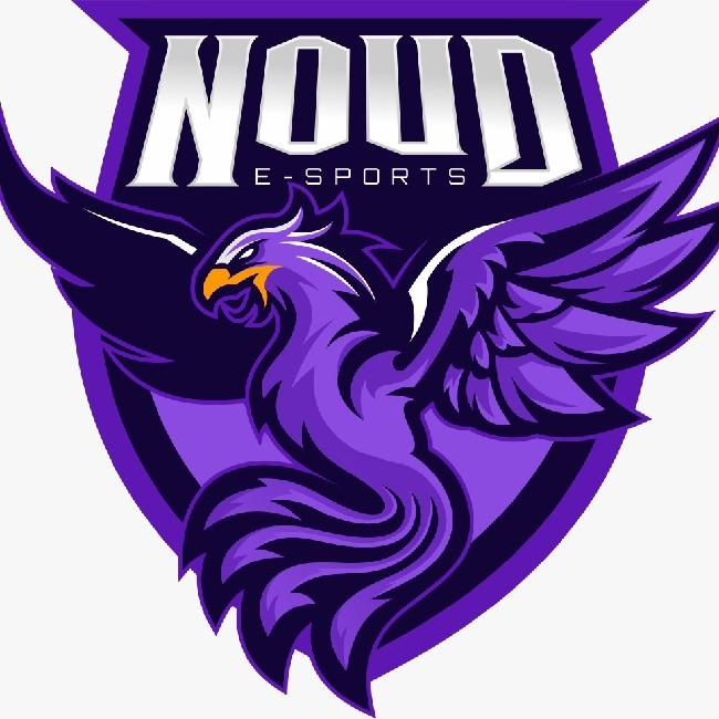 Noud E-Sports